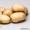КХ «Нива» уже давно зарекомендовало себя как качественного производителя картофе #1406541