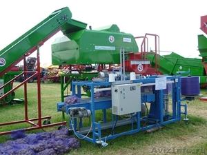 автоматическая мешкозашивочная машина для овощей картофеля фруктов маус-25 - Изображение #3, Объявление #915223