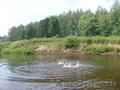Домик в деревне на берегу реки Нерль,с баней и зем.уч. - Изображение #5, Объявление #1322432